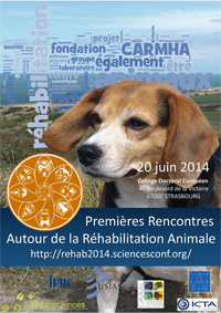 Affiche Rehab2014(ter)